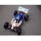 WP FLASH 3.0 BRUSHLESS BUGGY RACE ROLLER - GRP-90170.RTR