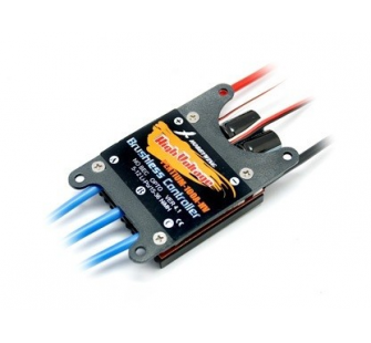 Hobbywing Pentium ESC Brushless Hight Voltage 100A - CYC-ESCP100