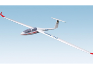 DG-1000 11980 Glider version - BMI-11980