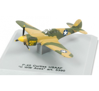 Curtiss P-40 USAF Armour 1/100 - T2M-H5390