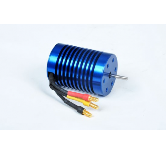 Moteur Brushless (option) T4905/7R - T2M-T4905/7R