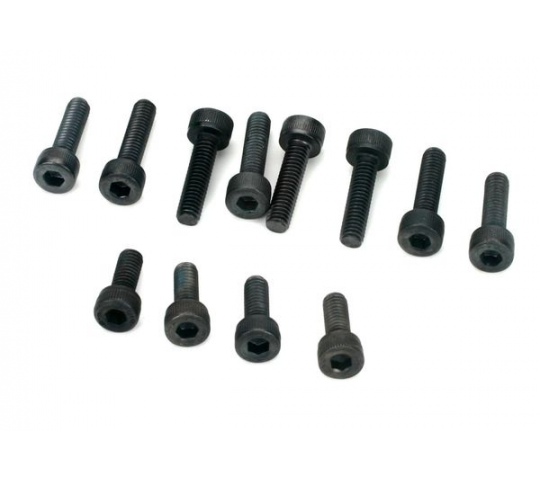 Screw Set,Engine: E100901: 100 - EVO110901