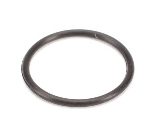 Carb Mounting O-Ring 10GX - EVO40816