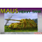 Maus Dragon 1/72 - T2M-D7255