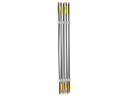 Pack de 10 fleches carbone - Diametre 5,5 - Spine 500 - Shoot Again - AJ868005