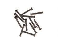 Vis taraudeuse 2x15mm (12pcs) T2M Pirate Booster - T2M-T4933/33