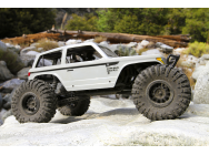 Buggy RC AXIAL Wraith Spawn 1/10 4WD RTR - AX90045