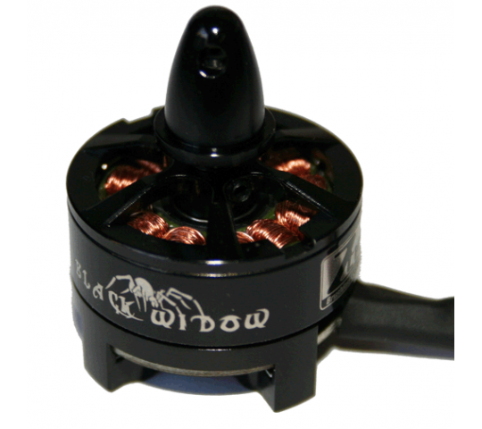 Black Widow Moteur 2204 2300kv (CW) ESC18A inclus ZTW - ZTWBW2204CWV1