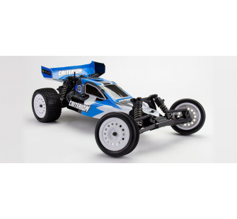 Criterion 1/10 2WD Electric Buggy - HLNA0302