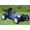 FTX VANTAGE 1/10 BRUSHED BUGGY 4WD RTR 2.4GHZ/WATERPROOF - FTX5528
